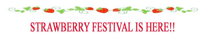 strawberry-festival-banner